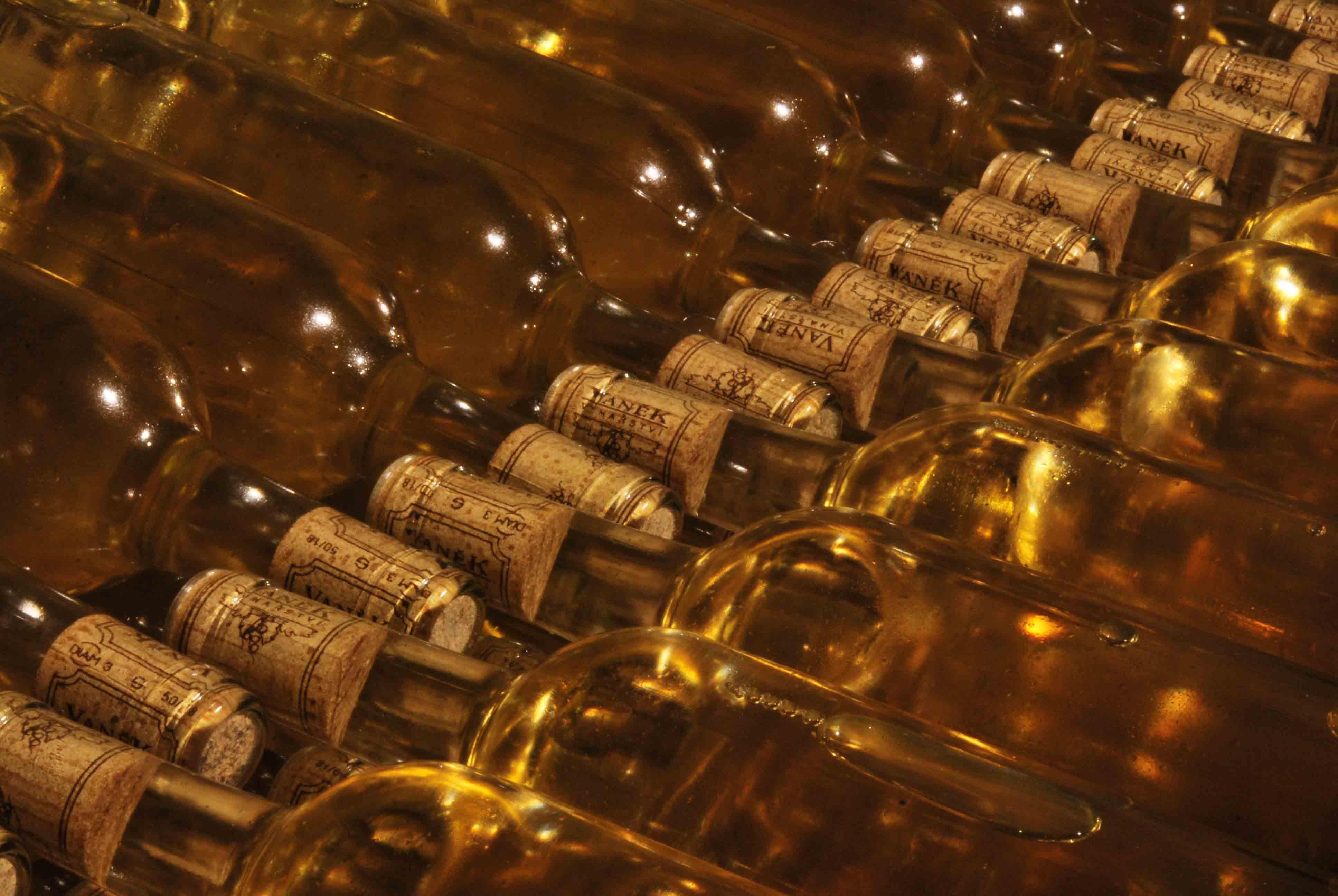 VÍNO VANĚK - nalahvované bílé víno si v klidu zraje, jakoby nic