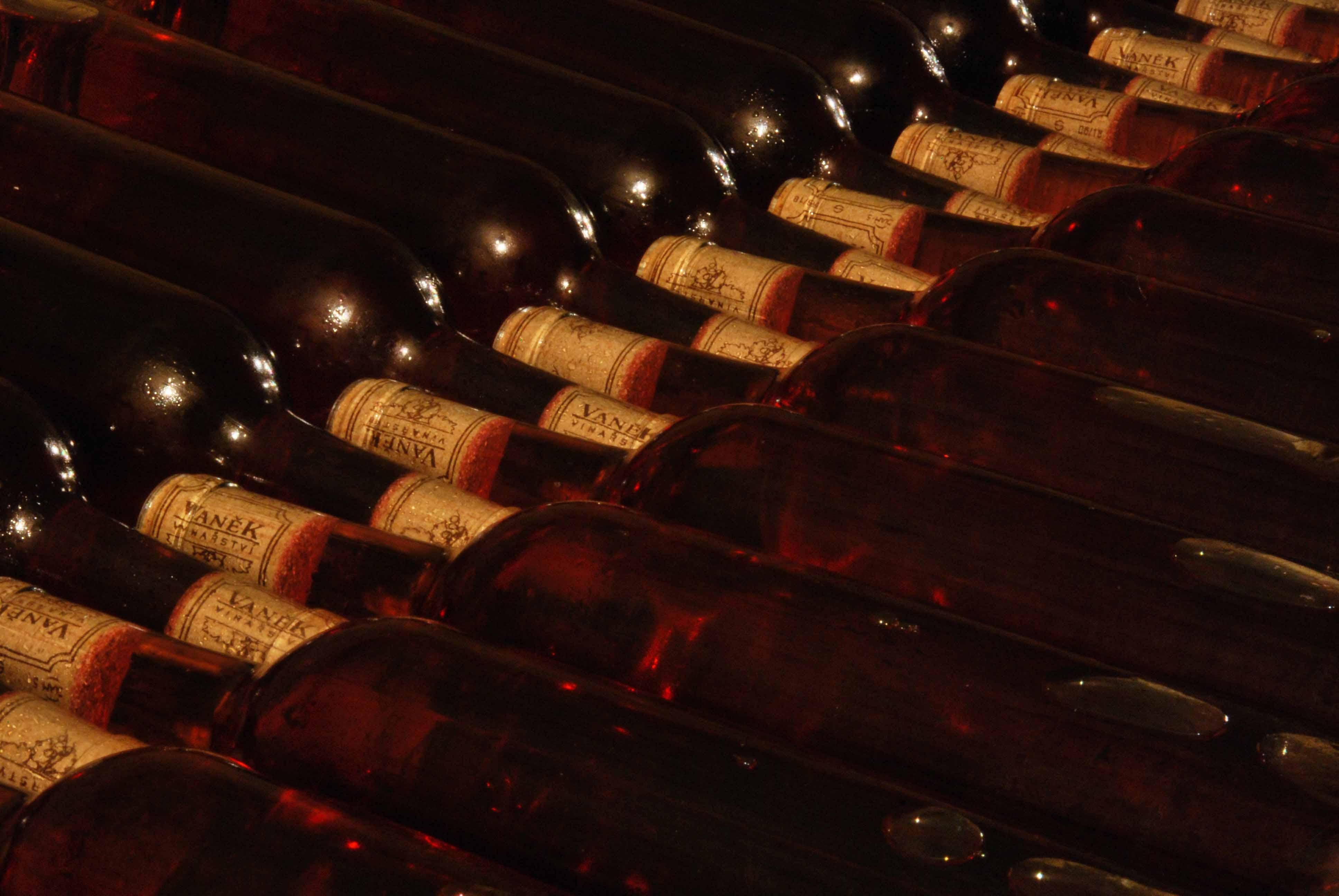VÍNO VANĚK - nalahvované růžové víno si v klidu, jakoby nic leží ve sklepě