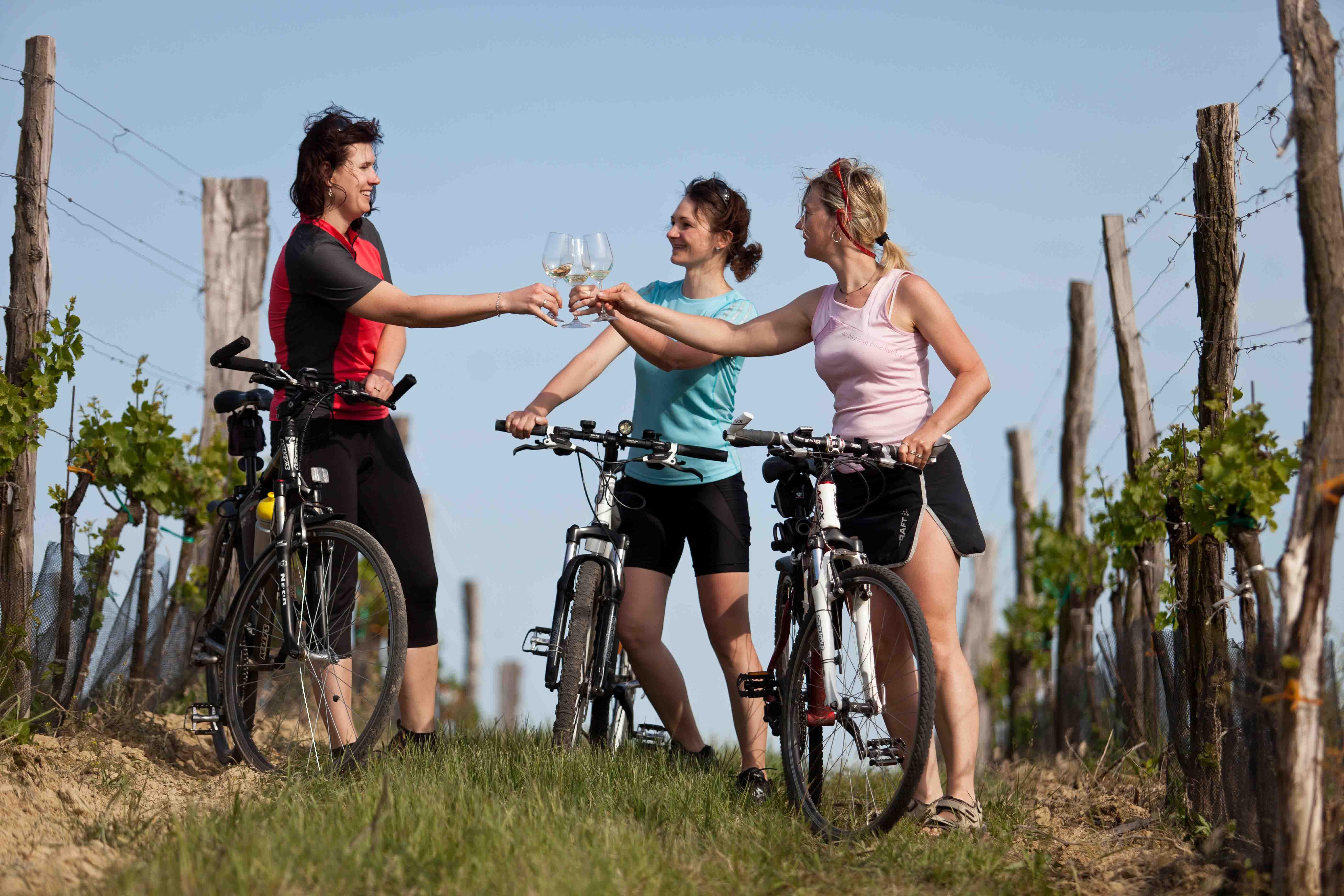 Lahofer na kole ve vinici