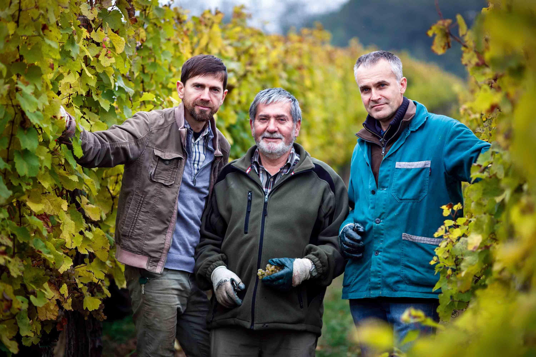 Vinařství Špalek - rodina ve vinici